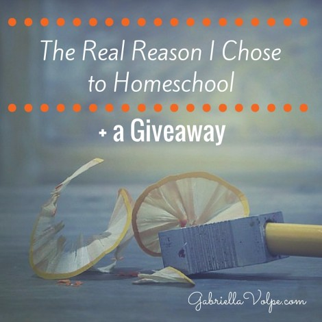 The Real Reason I Chose to Homeschool (+ a Giveaway)